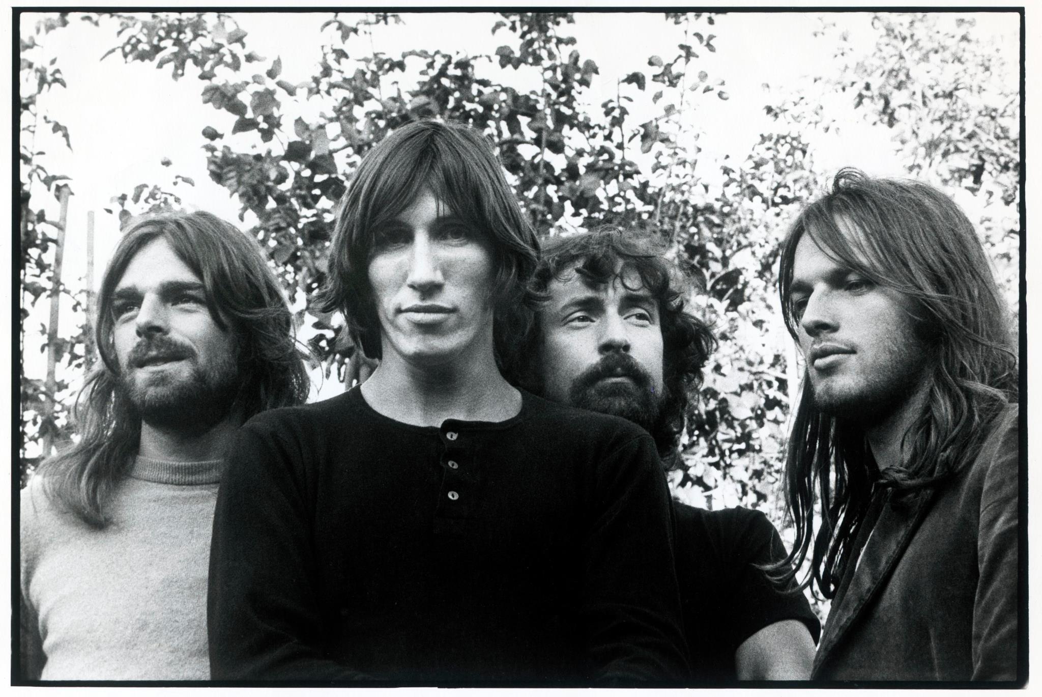 Fimi, Classifiche. Tiziano Ferro, Pink Floyd e tha Supreme, il Natale è loro