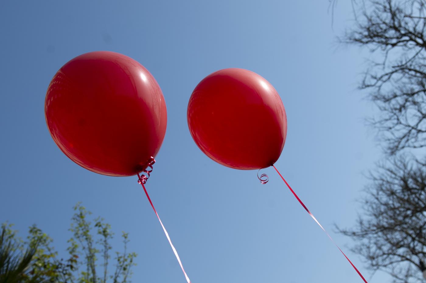 Italia verso lo stop a bicchieri di plastica e palloncini. Si attende decisione del Parlamento