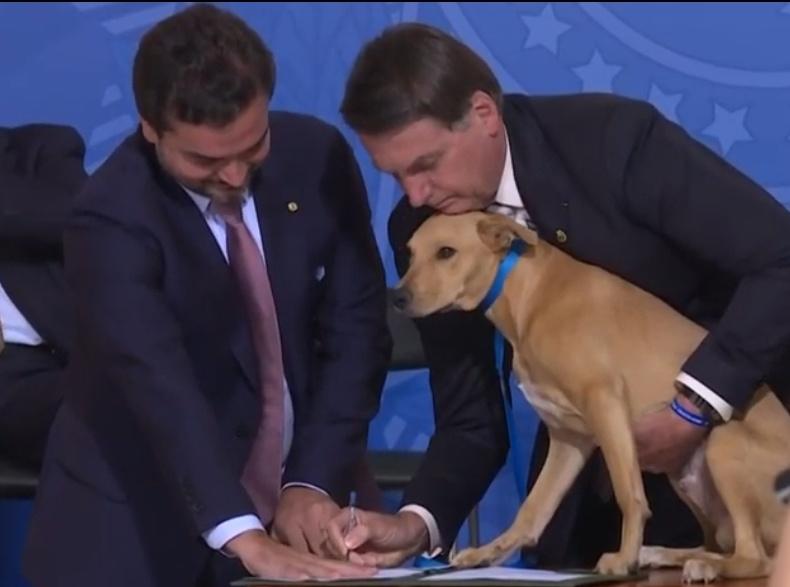 Il cane Nestor firma la legge contro gli abusi sugli animali (VIDEO)