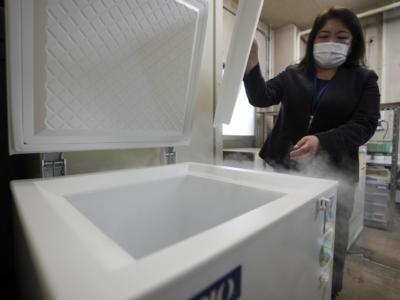 Tiene per 10 anni il cadavere della madre in congelatore per timore dello sfratto: arrestata