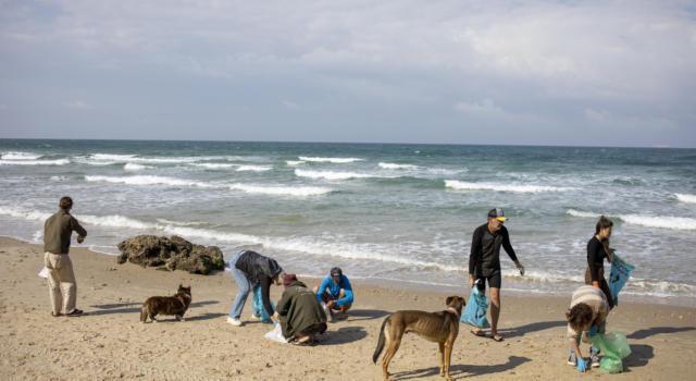 Israele, grossa massa di bitume trasportato a riva dalle mareggiate