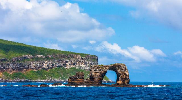 Galapagos: un ecosistema chiuso e a rischio perde uno dei suoi simboli
