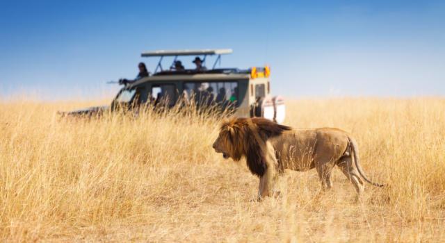 Travel2u, disponibile on demand la nuova puntata: Safari